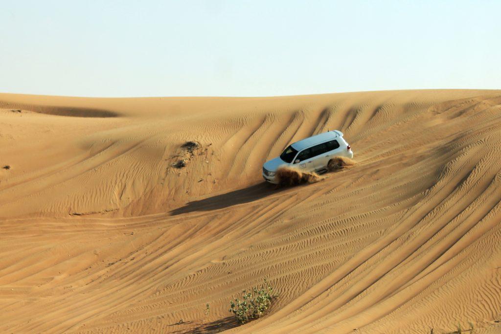 Пустинно сафари / Dubai Desert Safari