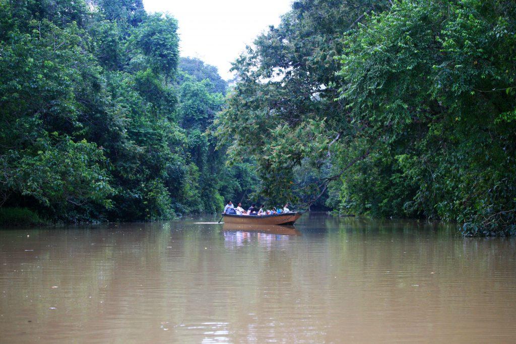 Сафари лодка / Safari Boat