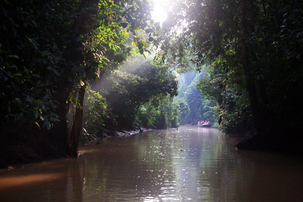 Река Кинабатанган (Kinabatangan River), остров Борнео / Borneo Island