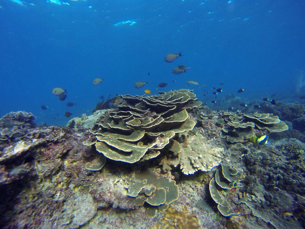 Bias Tugel Beach, Остров Бали, Индонезия, Bali Island, Indonesia