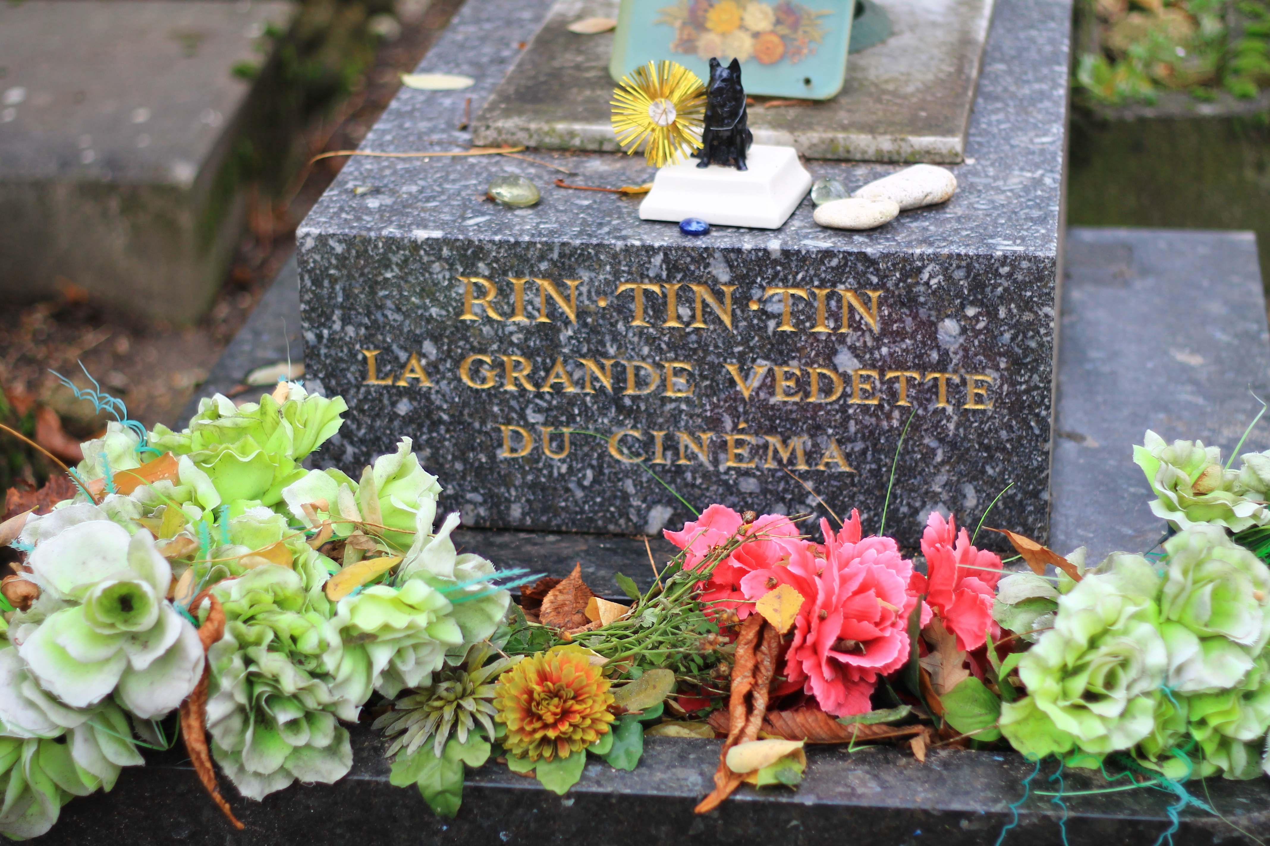 Гробището за домашни любимци / Pet Cemetery