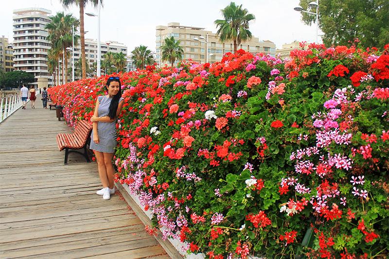 Мостът на цветята / Puente de las Flores