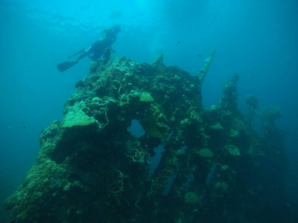 Skeleton Wreck, Coron Island, Philippines