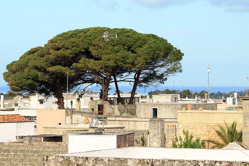 Морчано ди Леука, Саленто, Пулия, Италия / Morciano di Leuca, Salento, Puglia, Italy