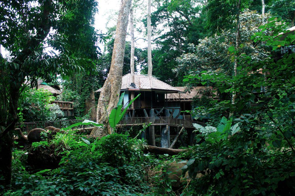 Rock and Treehouse Resort Khao Sok