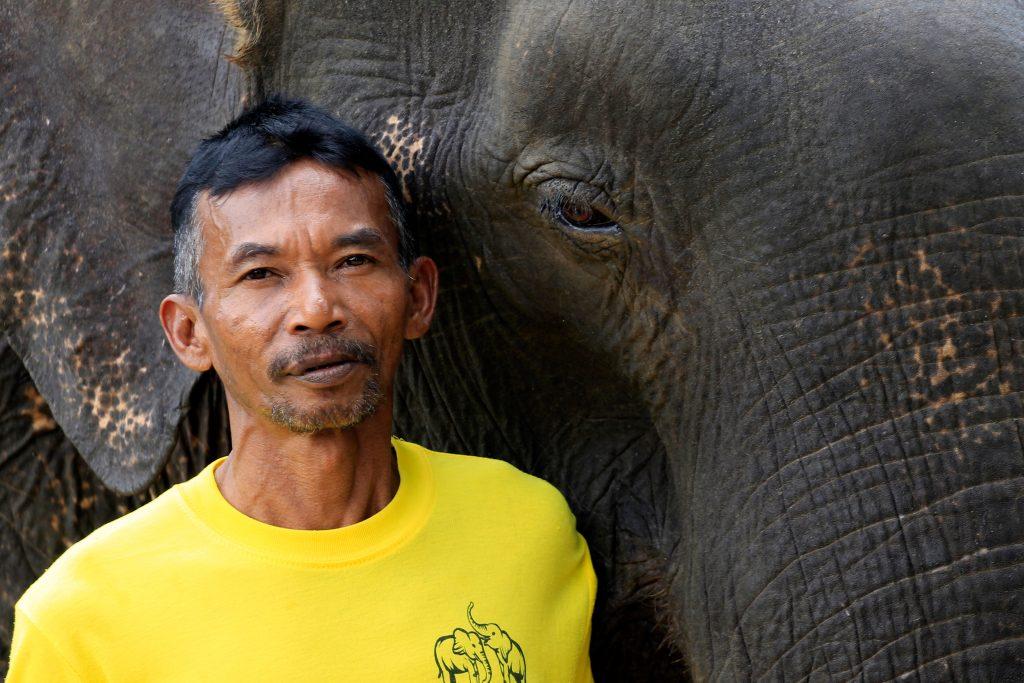 Thongsuk Elephant Park, Khao Sok